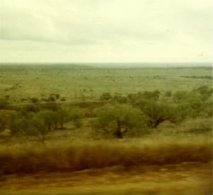 View out bus window just outside of Abilene, Texas, November 7, 1967