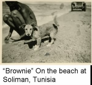 "Lt Bob Spikes and his beloved dog, ""Brownie"" at the Beach in North Africa. 1943"