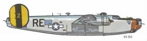 93rd Bomb Group B-24 Markings