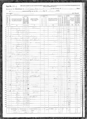 LARMAN-HENRY-1870-fed-census.jpg