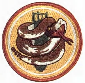 750th Bomb Squadron Patch