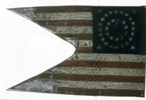 12th Illinois Cavalry Regiment Guidon