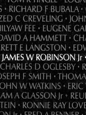 James William Robinson Jr