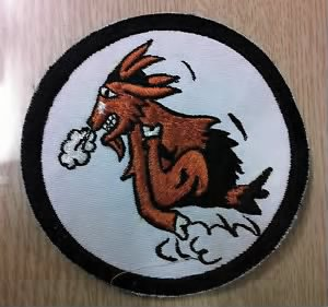 81st Bombardment Squadron patch.JPG